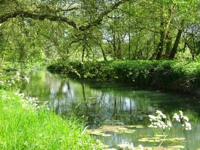 Honington Hall - River Stour